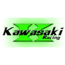 Clutch Kawasaki ZX10R 04-